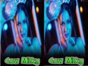 Cow Milky Aabha Paul