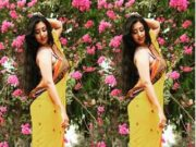 Moni Nude Saree Fashion
